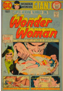 Wonder Woman Diana Giant benzi desenate