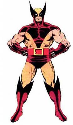 Costum Wolverine