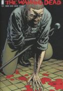 Walking dead Rick Grimes ranit Michonne