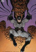 Batman catwoman nunta dc comics noi
