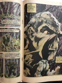 Swamp thing 1 dc comics benzi vechi numar cheie