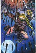 Benzi desenate comics ninja turtles testoasele ninja